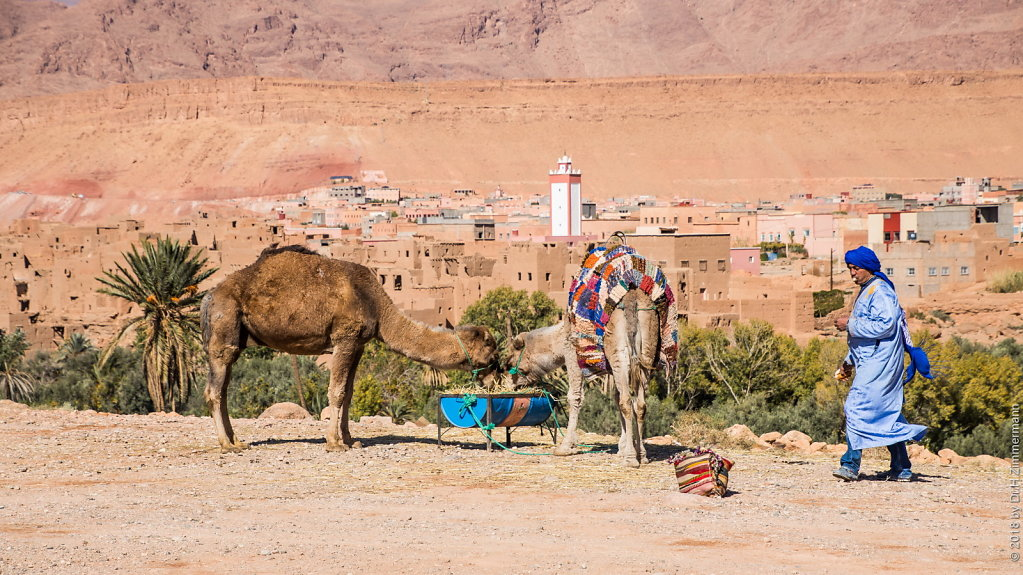 Marokko - Von Erfoud nach Quazarzate