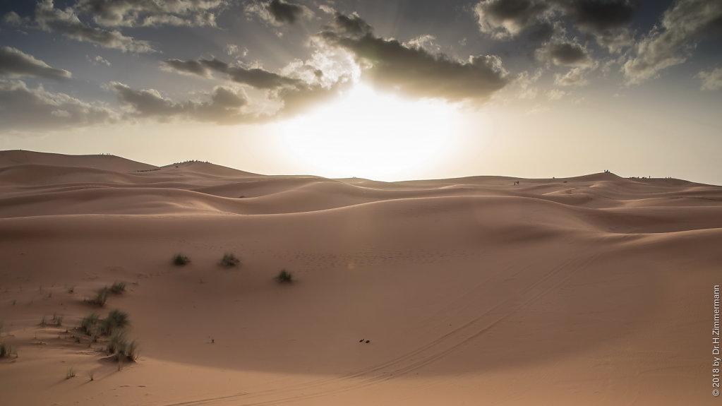 Wüste von Erfoud